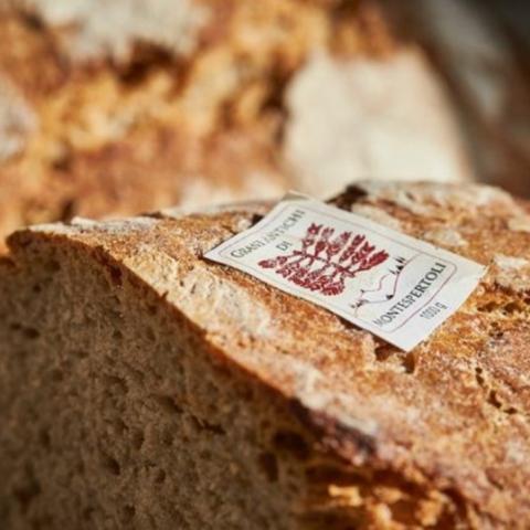 Grani antichi toscani per un'alimentazione naturale e salutare